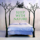 Sleep With Nature by Twilight Meditation