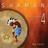 Shaman 4 by Wychazel