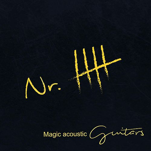 Nr. 5 by Magic acoustic Guitars