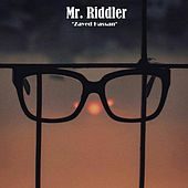 Mr. Riddler by Zayed Hassan