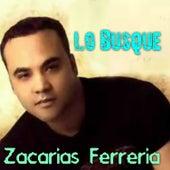 Lo Busque by Zacarias Ferreira