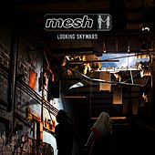 Looking Skyward (Deluxe Edition) by Mesh