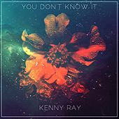 You Don't Know It by Kenny
