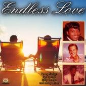 Endless Love von Various Artists