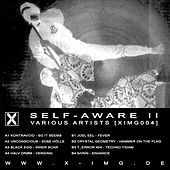 Self-Aware II by Various Artists