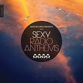 Sexy Radio Anthems, Vol. 2 by Various Artists