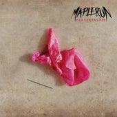 Partykrasher by Maplerun