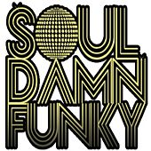 Soul Damn Funky Presents New York Classics, Vol. 1 by Various Artists