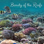 Beauty of the Reefs by Nature Sounds
