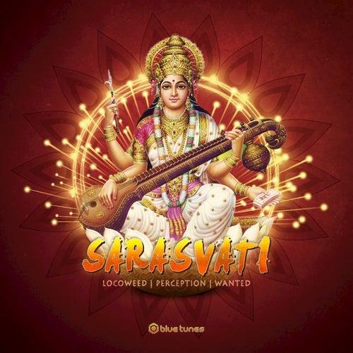 Sarasvati by Perception