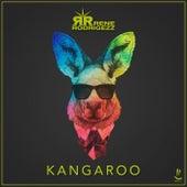 Kangaroo by Rene Rodrigezz