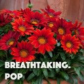 Breathtaking. Pop von Various Artists