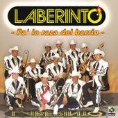 Pa'la Raza Del Barrio by Laberinto