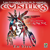 Play & Download El Concierto Del Amor by Banda Cuisillos | Napster