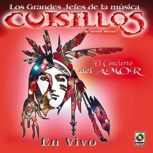 Play & Download El Concierto Del Amor by Banda Cuisillos | Napster