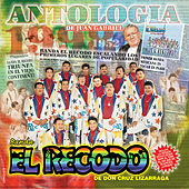 Play & Download Antologica De Juan Gabriel by Banda El Recodo | Napster