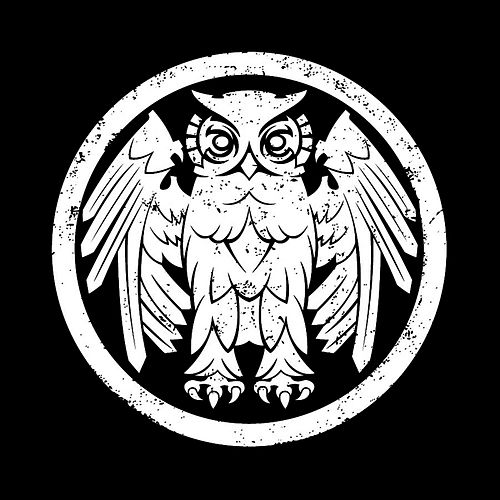 Underneath The Owl by Riverboat Gamblers