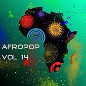 Afropop, Vol. 14 by Various Artists