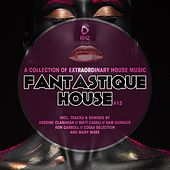 Fantastique House Edition 13 by Various Artists