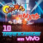 10 Trancazones En Vivo by Various Artists