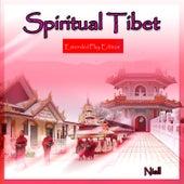 Spiritual Tibet by Niall