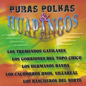 Puras Polkas & Huapangos by Various Artists