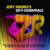 Joey Negro's 2011 Essentials by Various Artists