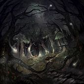 A Forest Dark by Stone Circle