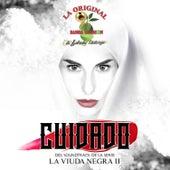 Cuidado by La Original Banda El Limon de Salvador Lizárraga