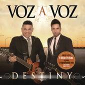 Destiny by Voz A Voz