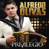 Privilegio by Alfredo Olivas