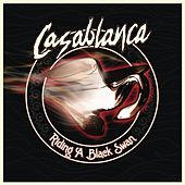 Riding a Black Swan by Casablanca
