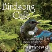Birdsong Café - The Sound of the New Zealand Rainforest by David Antony Clark