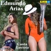 Canta Gaviota by Edmundo Arias
