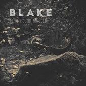 Ain't Found No Gold by Blake