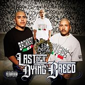 Last of a Dying Breed by 13 Boyz