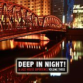 Deep in the Night!, Vol.3 - A Jazz House Experience von Various Artists