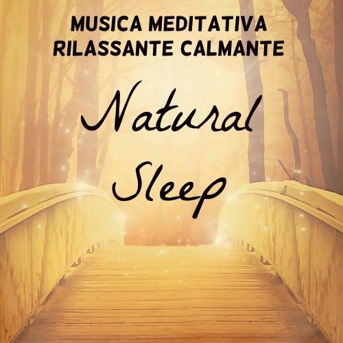 Natural Sleep - Musica Meditativa Rilassante Calmante per Studiare Meglio Spirito Libero Potere della Mente con Suoni della Natura Benessere Strumentali by Nature Sounds Nature Music