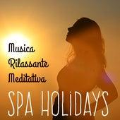 Spa Holidays - Musica Rilassante Meditativa per Massoterapia Studiare Meglio Benessere Fisico con Suoni Strumentali della Natura New Age by Various Artists