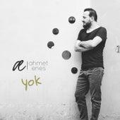 Yok by Ahmet Enes