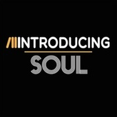 Introducing...Soul von Various Artists