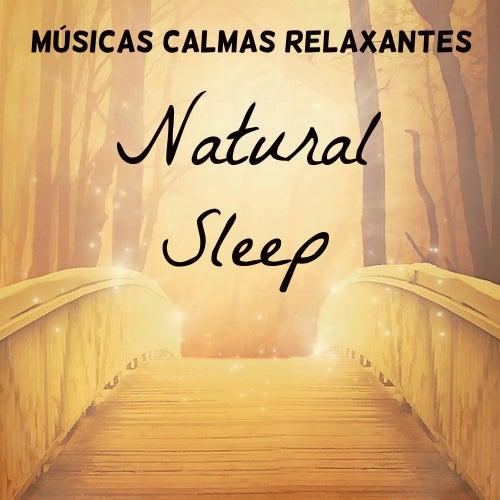 Natural Sleep - Músicas Calmas Relaxantes para Retiro Meditação Chakras do Corpo Tratamento Espiritual com Sons Naturais Instrumentais New Age by Nature Sounds Nature Music