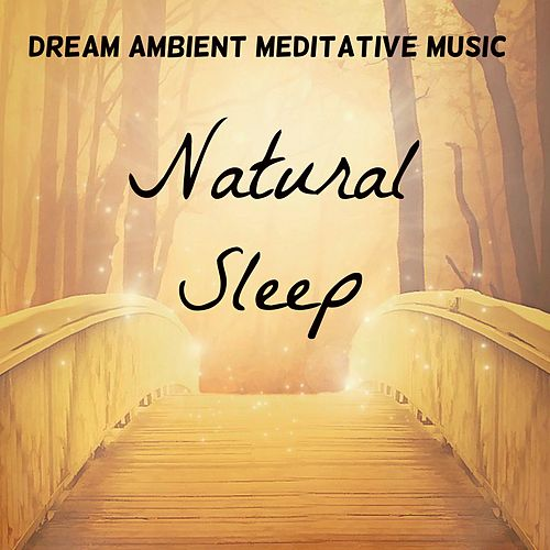 Natural Sleep - Dream Ambient Meditative Music for Healing Therapy Therapeutic Breaks Yoga Exercises with Relaxing Instrumental New Age Nature Sounds by Nature Sounds Nature Music