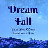 Dream Fall - Study Sleep Mindfulness Relaxing Music for Zen Therapy Inner Smile Equilibrium Balance with Soothing New Age Nature Sounds by Various Artists