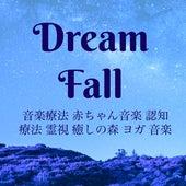 Dream Fall - 音楽療法 赤ちゃん音楽 認知療法 霊視 癒しの森 ヨガ 音楽 by Various Artists
