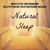 Natural Sleep - Meditatie Oefeningen Zelfhypnose Rustgevende Muziek voor Chakra Opleiding Spirituele Genezing Yoga Massage Therapie met New Age Natuur Instrumentale Geluiden by Nature Sounds Nature Music