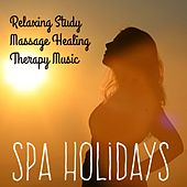 Spa Holidays - Relaxing Study Massage Healing Therapy Music for Deep Concentration Awareness Wellness Programs with Meditative Spiritual Instrumental New Age Sounds by Various Artists