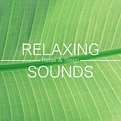Relaxing Sounds - Relax & Sleep Well (Rain, Ocean, Piano Music, New Age Relaxing Music) by Polly Brown