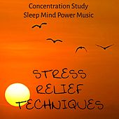Stress Relief Techniques - Concentration Study Sleep Mind Power Music for Healing Therapy Biofeedback Training and Good Vibes with Nature Ambient Relaxing Sounds by Kundalini Yoga Music