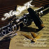 Play & Download MuSaiK by Luigi Zimmitti | Napster